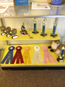Science Trophies 2